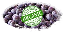 organic frozen acai berry in bulk packaging